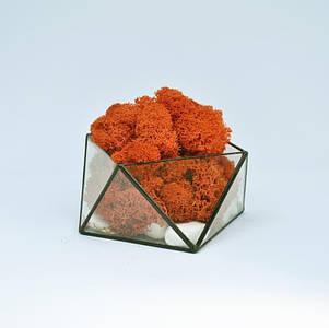 Стеклянный Флорариум кашпо со стабилизированным мхом геометрический оранжевый 15 см/ Декор из живого мха