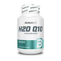 BioTech H2O Q10 (60 caps)