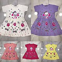 """Сукня дитяче для дівчинки """"ПЕСИК"""" розмір 2-6 років,колір уточнюйте при замовленні, фото 1"""