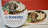 Bayer Foresto Байер Форесто - ошейник против блох и клещей 70 см, фото 4