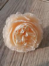 Троянди Девіда Остіна - піоновидна (тканина) - 8 див. Колір шампань.