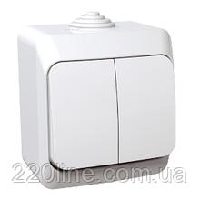 Выключатель Schneider-Electric Cedar Plus 2-клавишный IP44 16А белый, WDE000550