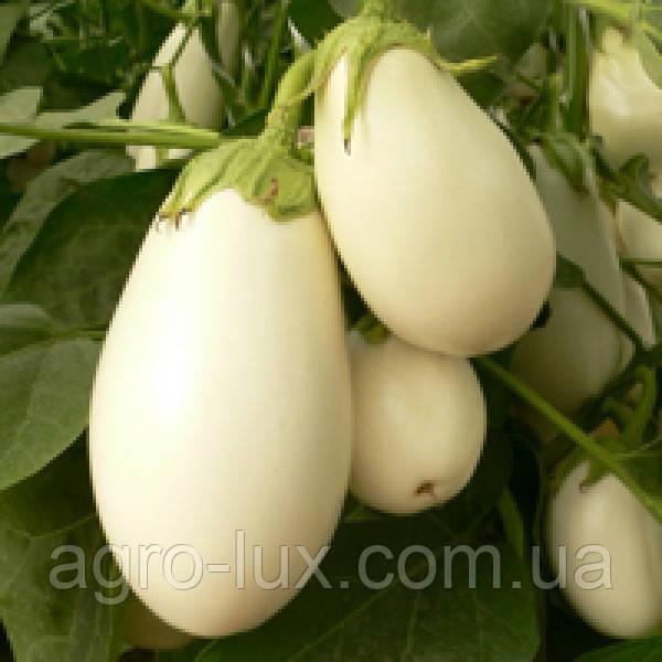 Семена белого баклажана Бибо F1 1000 сем  Seminis / Семинис