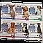АнимАлл AnimAll VetLine Spot-on краплі від бліх та кліщів для собак вагою від 4 до 10 кг, 1 піпетка х 2 мл, фото 2