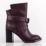 Ботинки женские весна/осень, люкс качество & True series, женская обувь, фото 4