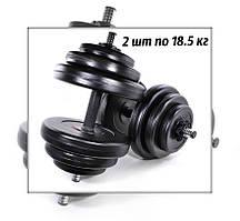 Комплект гантелей 2 шт по 15.5 кг набірні композитні для спорту та фітнесу
