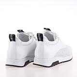 Кроссовки женские летние, люкс качество & True series, женская обувь, фото 3