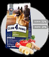 Клуб 4лапы Scout 5кг для собак крупных и средних пород