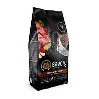 Сухий корм Savory Adult Cat Sensitive Digestion Fresh Lamb & Turkey для котів з ягням та індичкою 2КГ