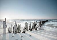 3D Фотообои 368 x 280 см Морской горизонт (13305P10)
