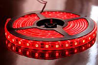 Светодиодная LED лента smd 35 х 28 IP65 красная 60LED/m