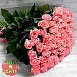 Роза лососевого цвета Анна Карина 40 - 110 см, фото 3