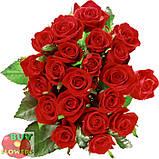 Роза бордовая Престиж 40 - 90 см, фото 3