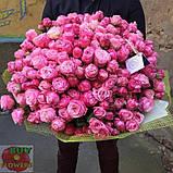 Леди Бомбастик роза веточная, фото 4