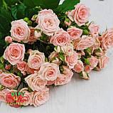 Роза Лидия спрей, фото 3