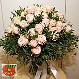 Роза Мадам Бомбастик ветка, фото 5