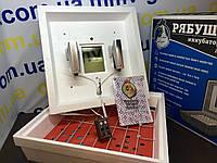Инкубатор бытовой Рябушка-2  Аналоговый с мех переворотом