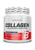 Коллаген BioTech USA Collagen 300 грамм, Черная малина