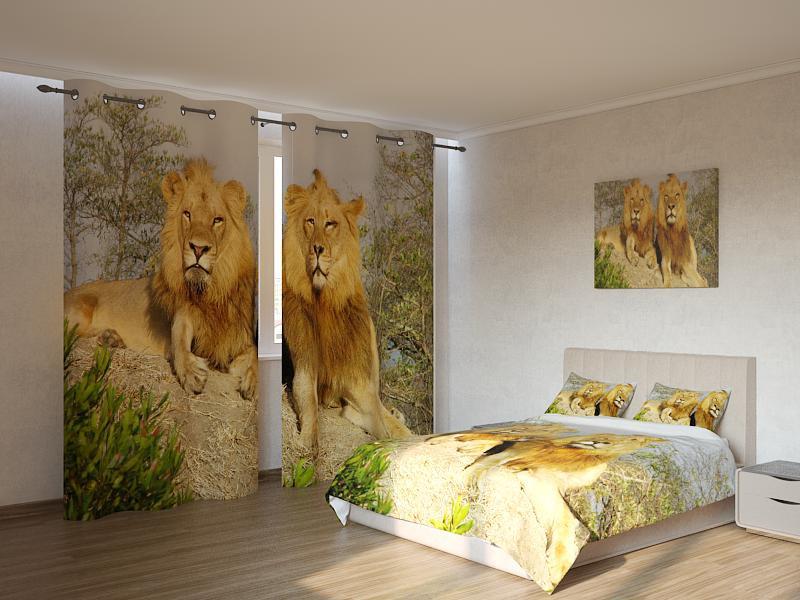 Фотокомплект два льва