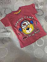 Детская трикотажная футболка для мальчика Spring Camp 1-4 года, цвет уточняйте при заказе, фото 1