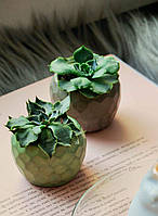 """Кашпо из бетона """"желудь"""" 4см маленький вазон горшочек для суккулента мха корпоративный подарок"""