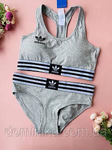S Серый спортивный комплект женского нижнего белья для занятий спортом, бесшовный топ, трусики слипы