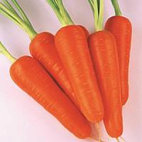 Семена моркови Абако F1 к. 1,6-1,8 200 000 шт Seminis / Семинис