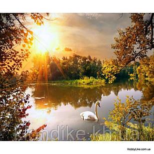 """Картина по номерам """"Одинокий лебедь"""" 40×50 см Акриловые Краски, Картонная упаковка"""