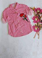 """Сорочка дитяча в смужку з вишивкою на дівчинку 5-8 років(2цв)""""MARI"""" купити недорого від прямого постачальника"""