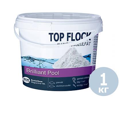 Флокулянт (коагулянт, флокер) в гранулах для води у басейні 80012 ECM (Угорщина), 1 кг