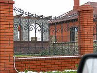 Ковані паркани ворота купити