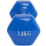 Гантели для фитнеса с неопреновым покрытием SP-Planeta Радуга TA-0001-3 (1x3кг), цвета в ассортименте, фото 5