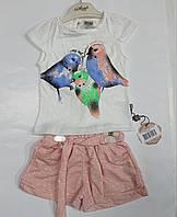 Костюм футболка + шорти Пташки на 2-5 років