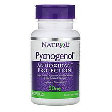 """Пикногенол Natrol """"Pycnogenol Antioxidant Protection"""" для здорового кровообращения, 50 мг (60 капсул)"""