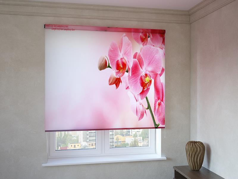 Рулонні штори з фотодруком червоно-рожева орхідея