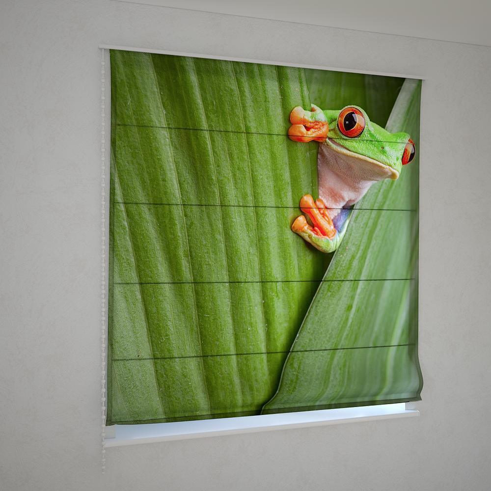 Римські штори жаба