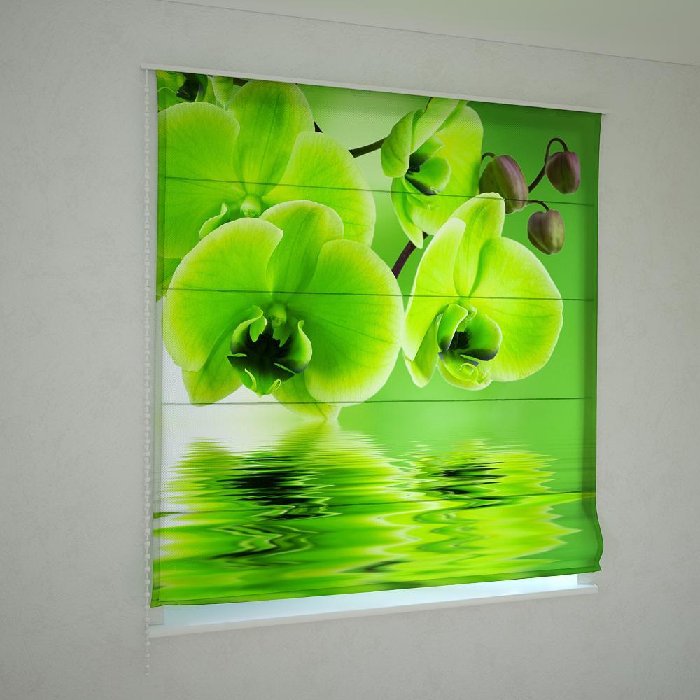 Римські штори зелена орхідея