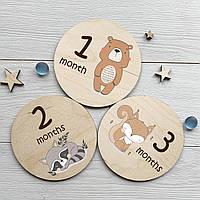 Набор деревянных карточек для детской фотосессии по месяцам 12 штук
