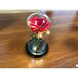 Стабілізована ТРОЯНДА В КОЛБІ З LED ПІДСВІЧУВАННЯМ, нічник, вічна троянда, 17 СМ Найкращий подарунок!, фото 3