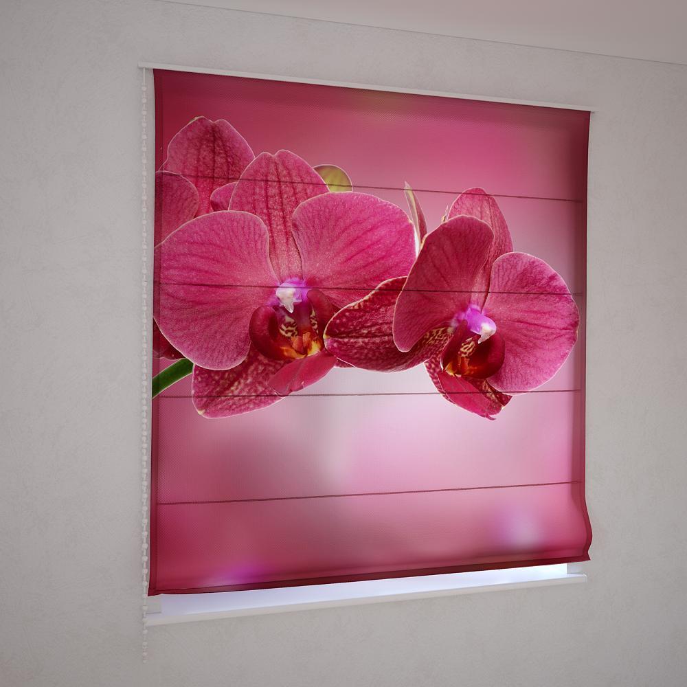 Римские шторы орхидея