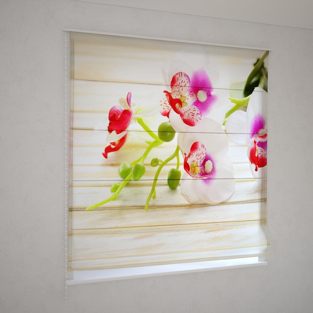 Римські штори квітка орхідеї