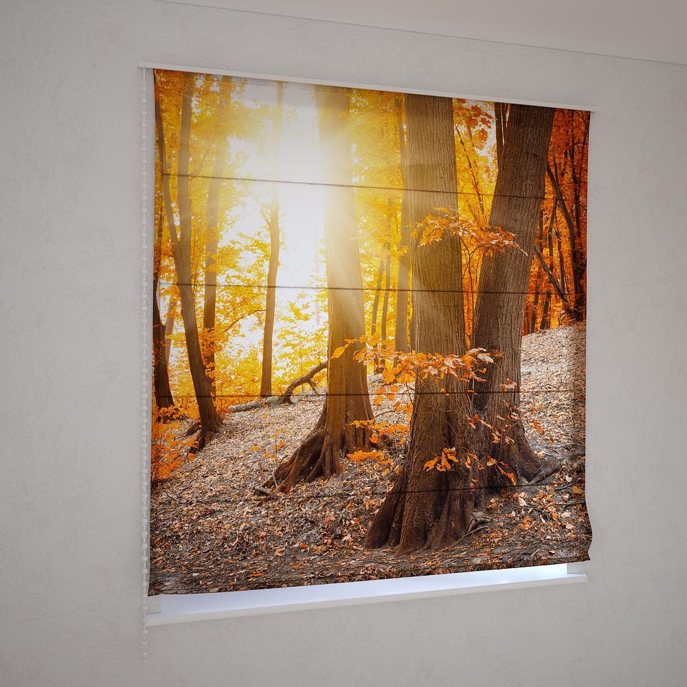 Римские шторы осенний лес