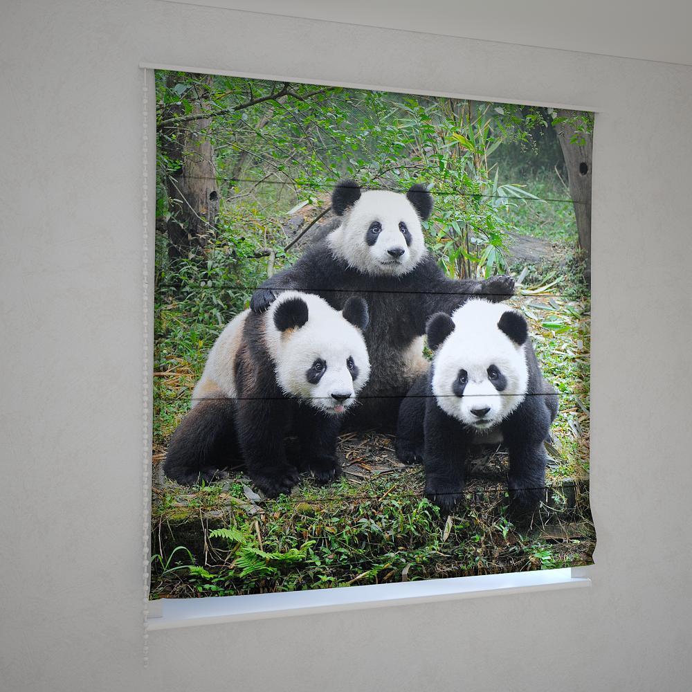 Римские шторы панда