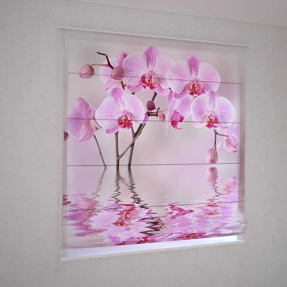 Римські штори рожева орхідея