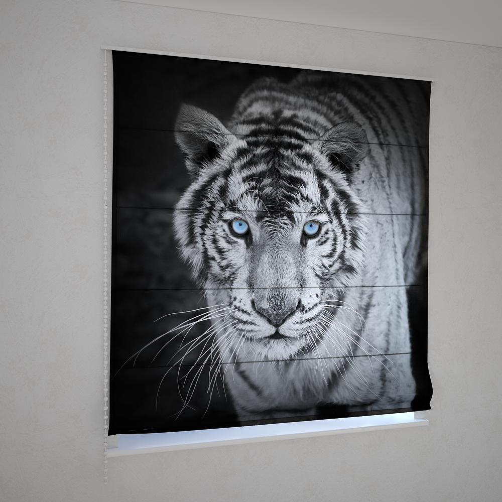 Римські штори чорно-білий тигр