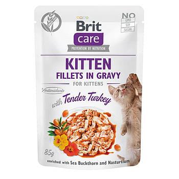 Влажный корм Brit Care Cat филе в соусе нежная индейка для котят, 85 гр