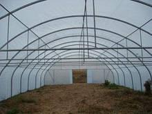 Теплиця фермерська TLF-6000 ОЛАН 6х8х3,5 з профільної оцинкованої труби (Каркас!)