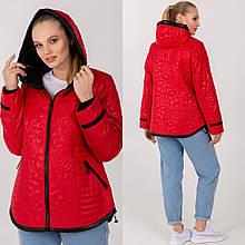 Жіноча демісезонна куртка Мішель середньої довжини