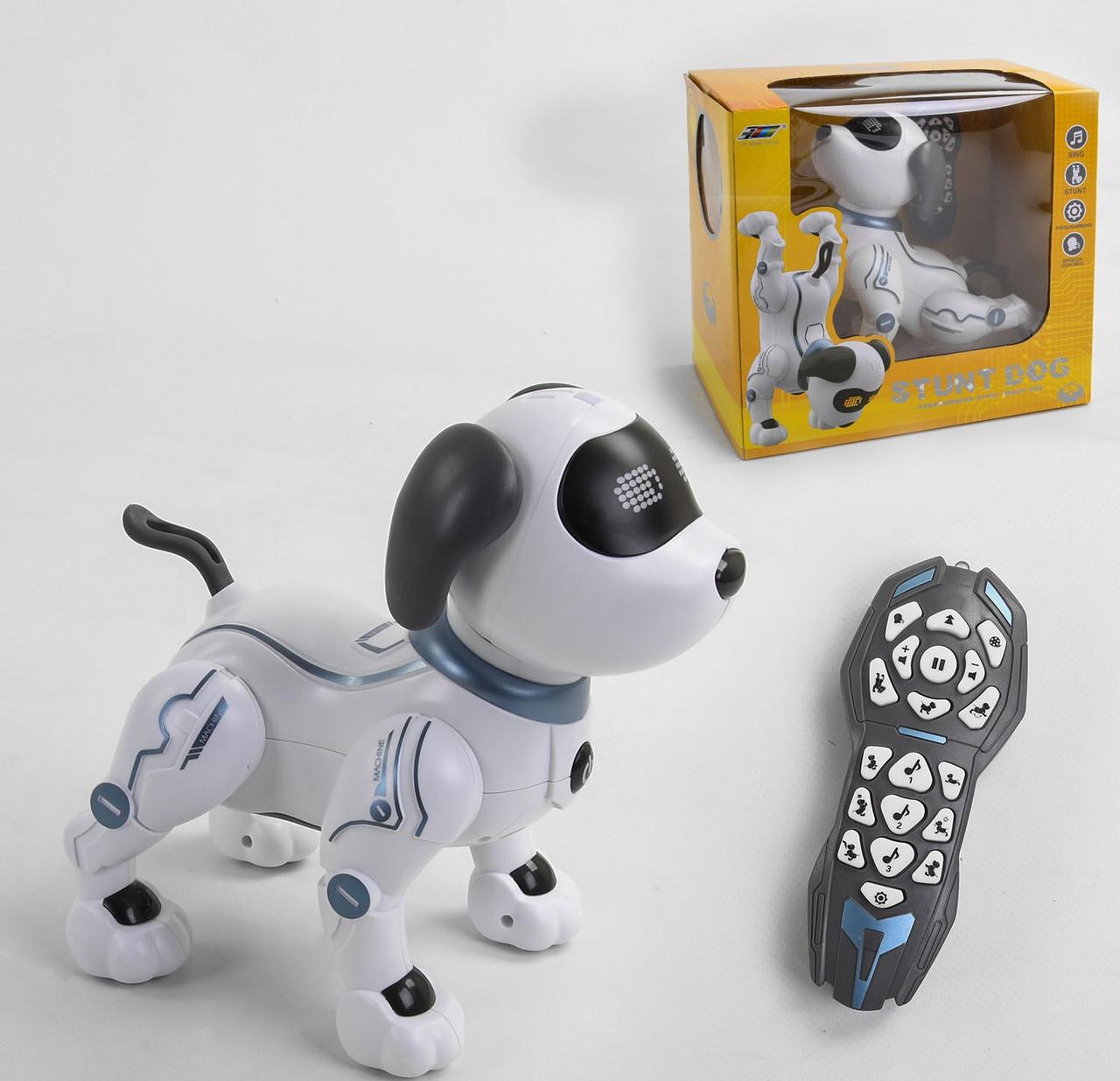 Собачка на радіокеруванні До 16 виконує трюки, голосове керування, управління д/в, світло, звук, короб