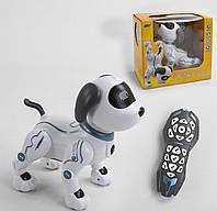 Собачка на радиоуправлении К 16 выполняет трюки, голосовое управление, управления д/у, свет, звук, в короб